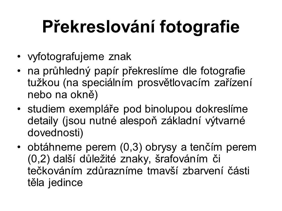 Překreslování fotografie