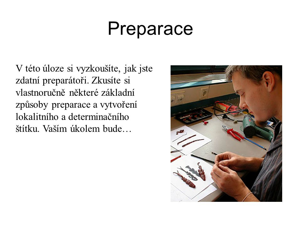 Preparace