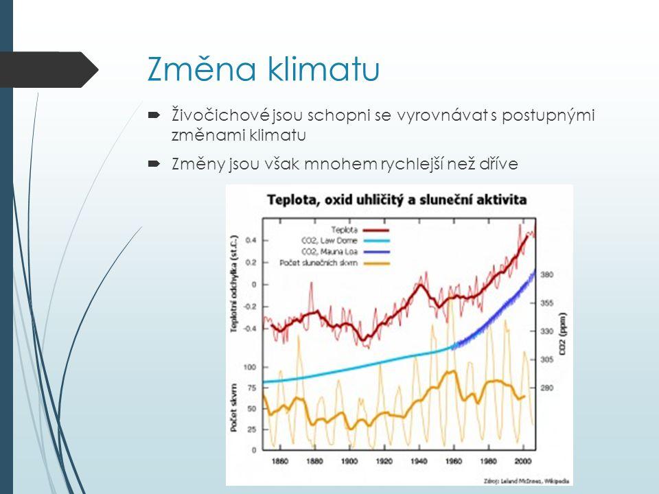 Změna klimatu Živočichové jsou schopni se vyrovnávat s postupnými změnami klimatu.