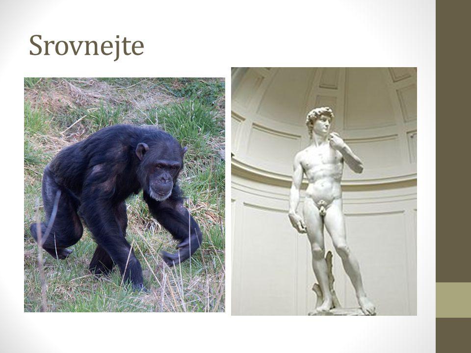 Srovnejte