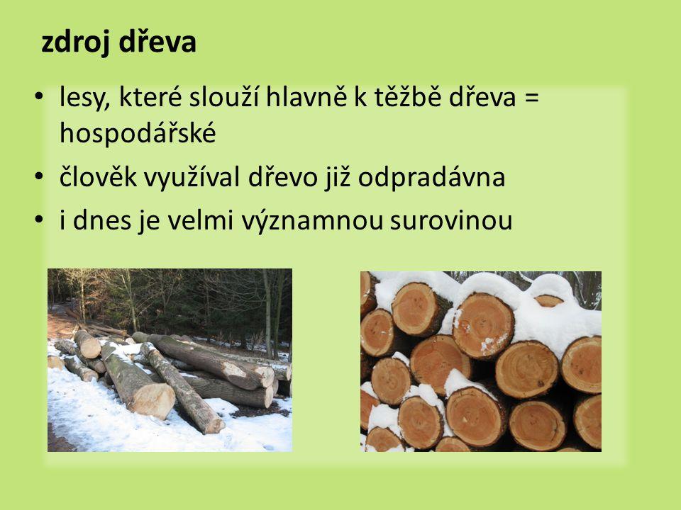 zdroj dřeva lesy, které slouží hlavně k těžbě dřeva = hospodářské