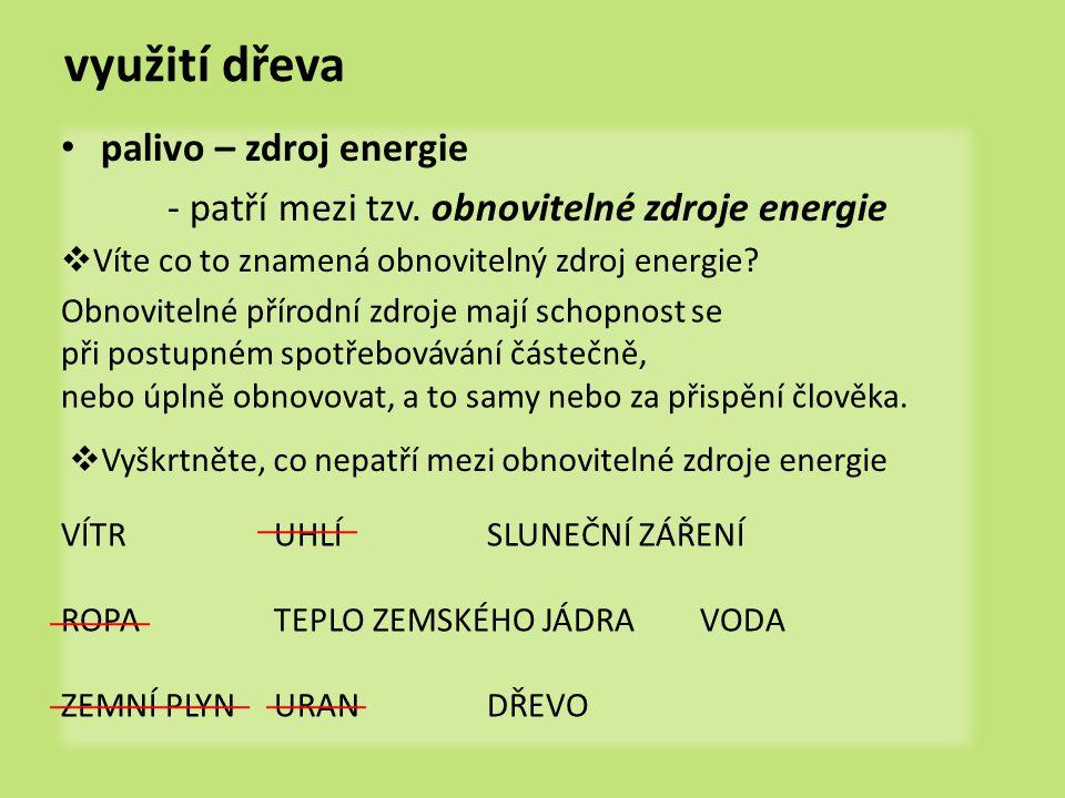 využití dřeva palivo – zdroj energie