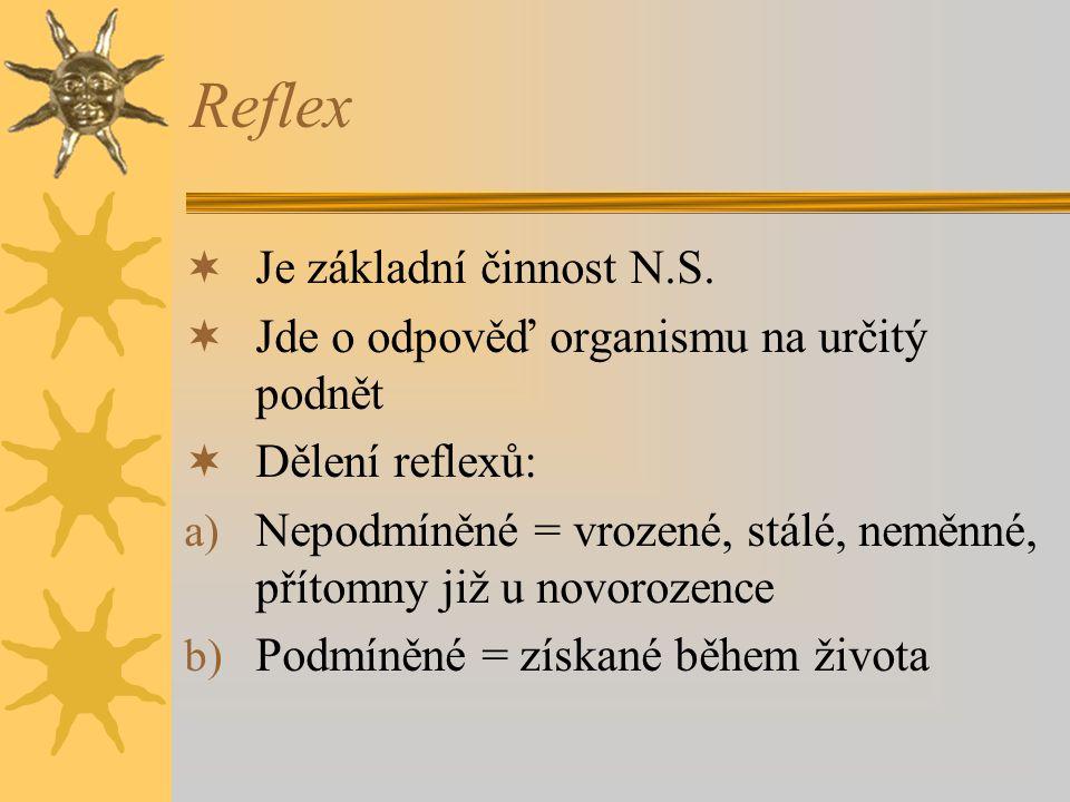 Reflex Je základní činnost N.S.