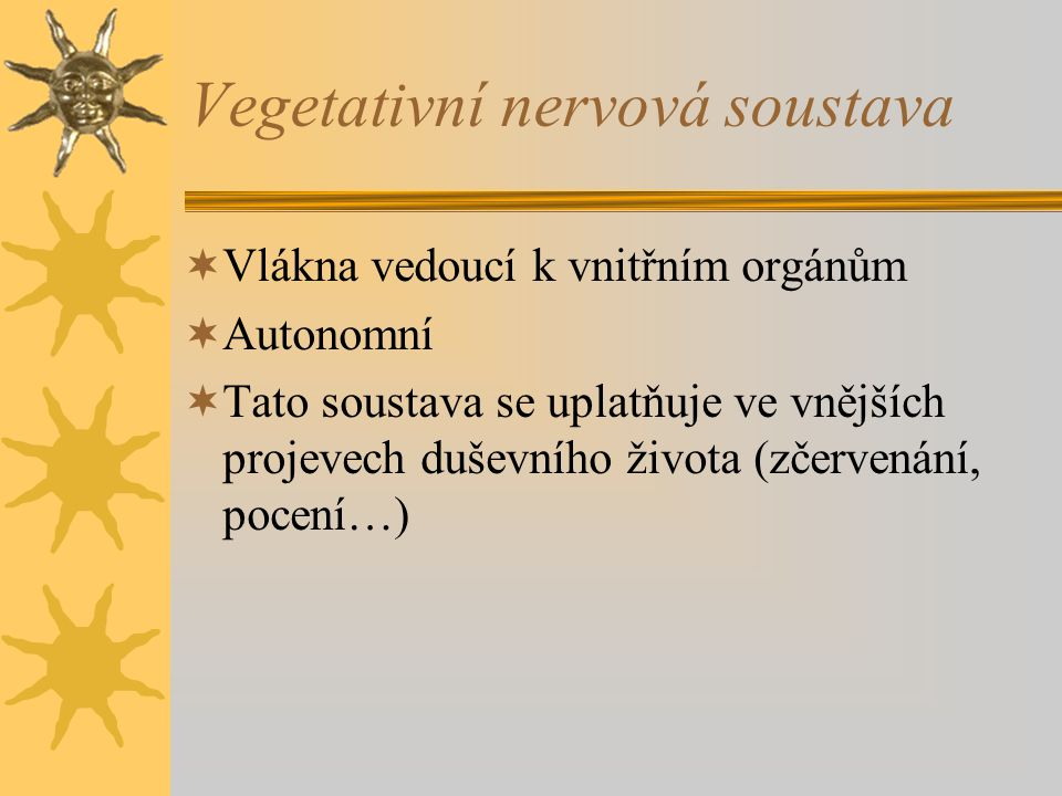 Vegetativní nervová soustava