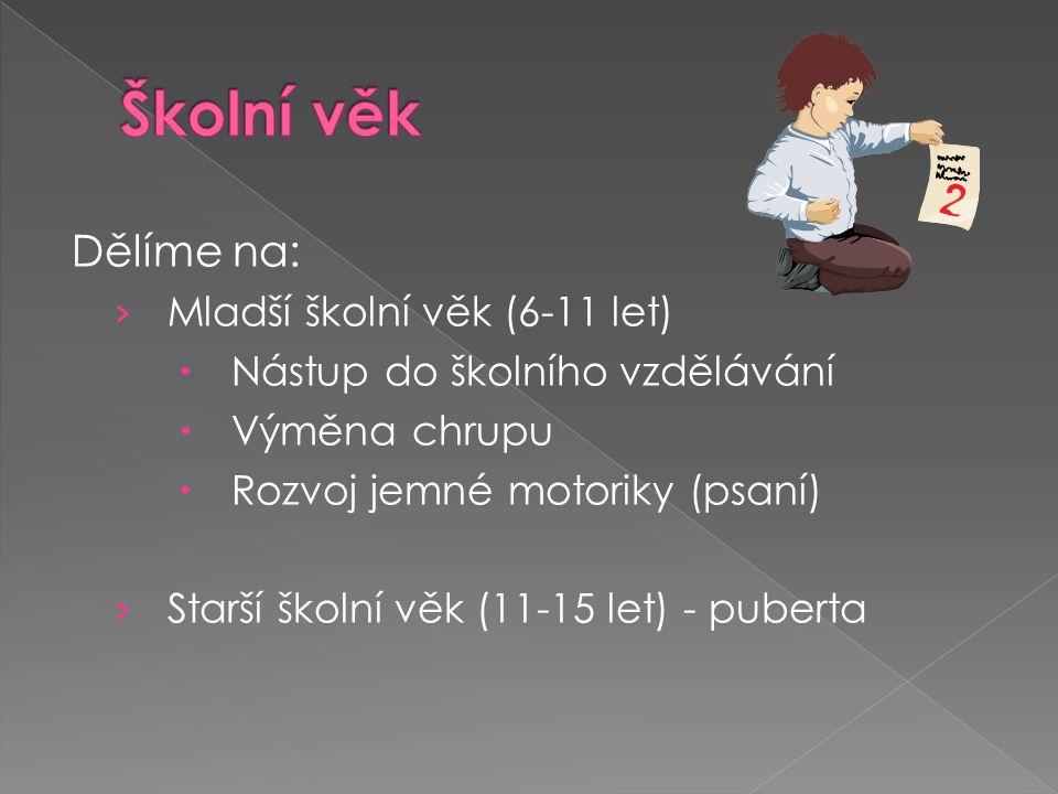 Školní věk Dělíme na: Mladší školní věk (6-11 let)