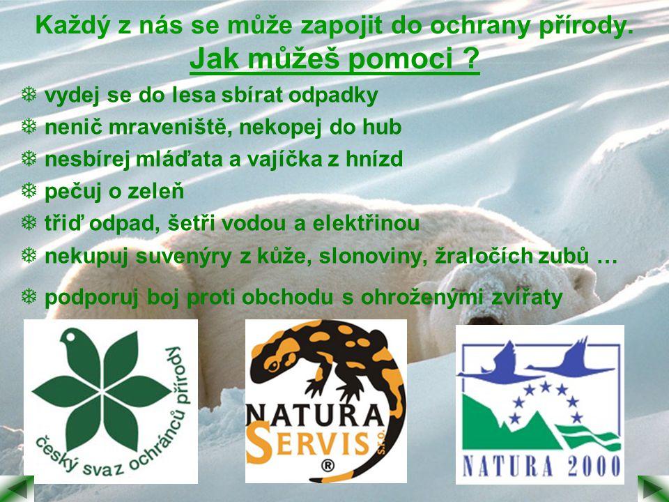 Každý z nás se může zapojit do ochrany přírody. Jak můžeš pomoci