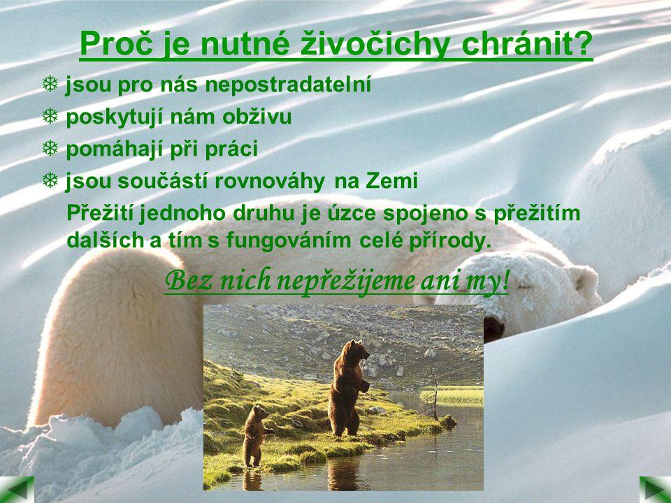 Proč je nutné živočichy chránit