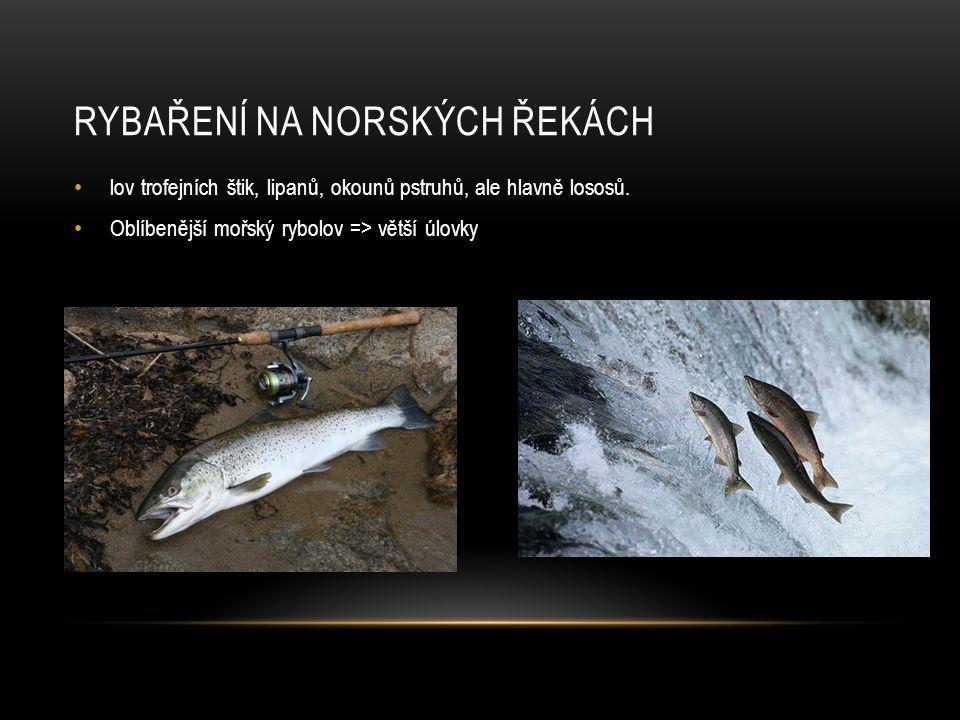 Rybaření na norských řekách