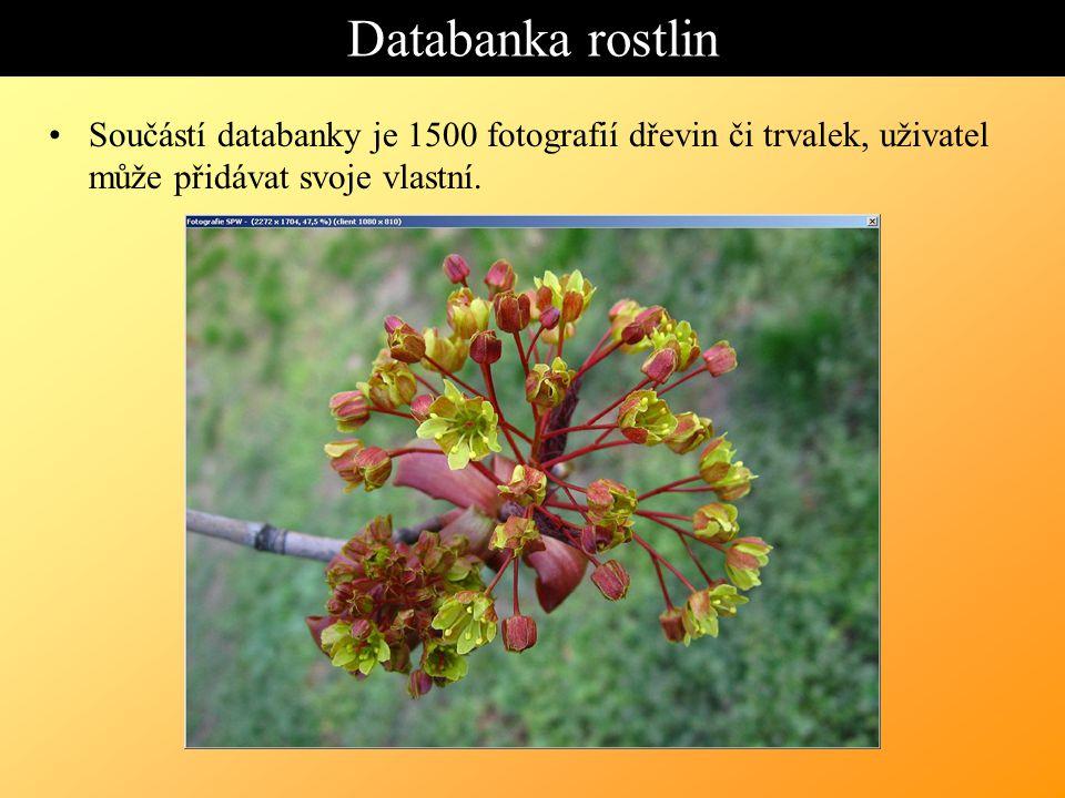 Databanka rostlin Součástí databanky je 1500 fotografií dřevin či trvalek, uživatel může přidávat svoje vlastní.