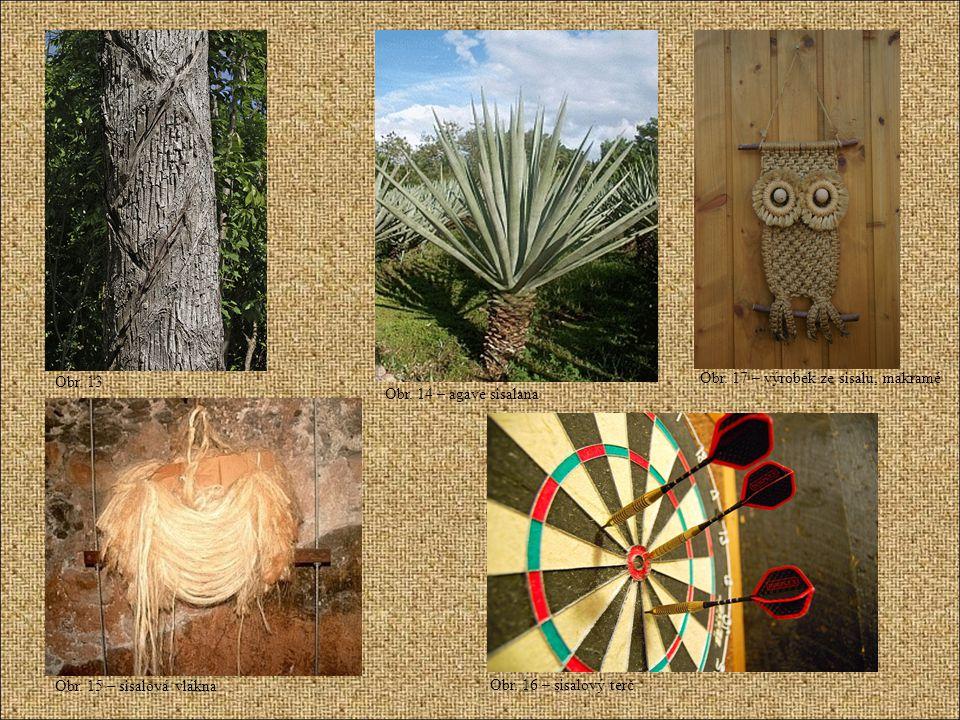 Obr. 13 Obr. 14 – agave sisalana. Obr. 17 – výrobek ze sisalu, makramé. Obr. 15 – sisalová vlákna.