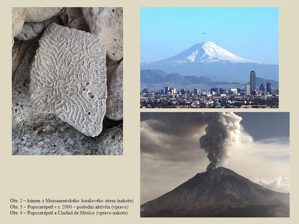 Obr. 2 – kámen z Mezoamerického korálového útesu (nahoře)