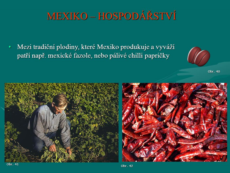 MEXIKO – HOSPODÁŘSTVÍ Mezi tradiční plodiny, které Mexiko produkuje a vyváží patří např. mexické fazole, nebo pálivé chilli papričky.