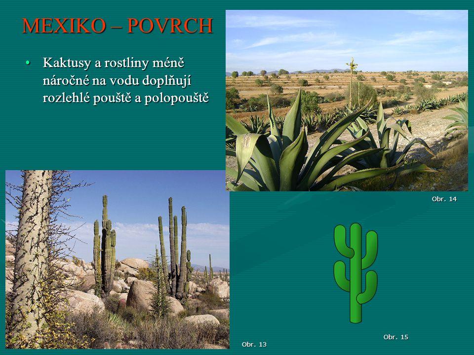 MEXIKO – POVRCH Kaktusy a rostliny méně náročné na vodu doplňují rozlehlé pouště a polopouště. Obr. 14.