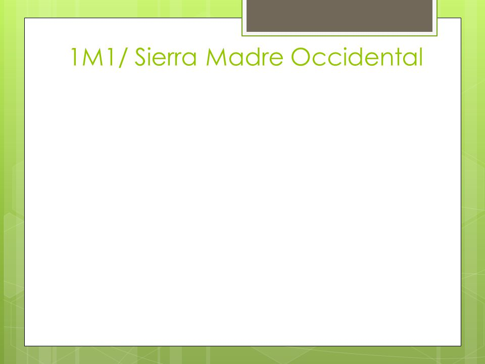 1M1/ Sierra Madre Occidental