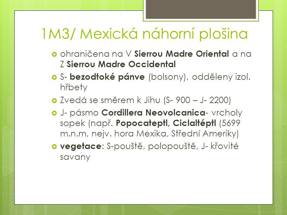 1M3/ Mexická náhorní plošina