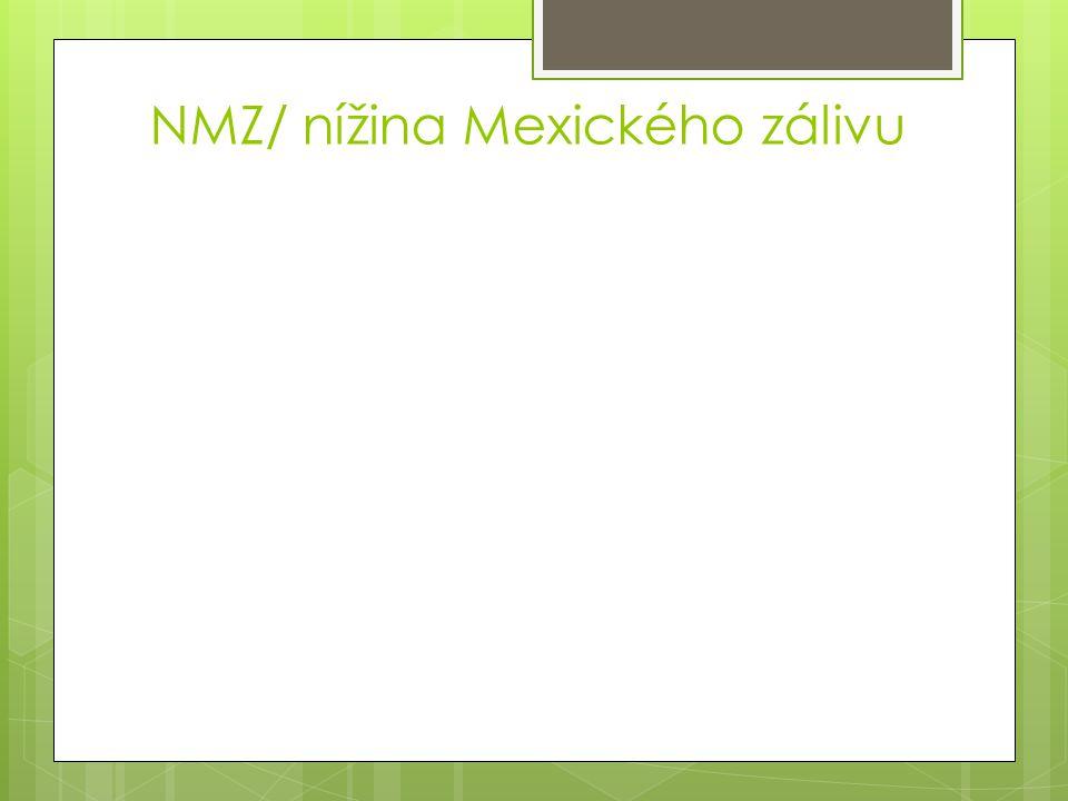 NMZ/ nížina Mexického zálivu