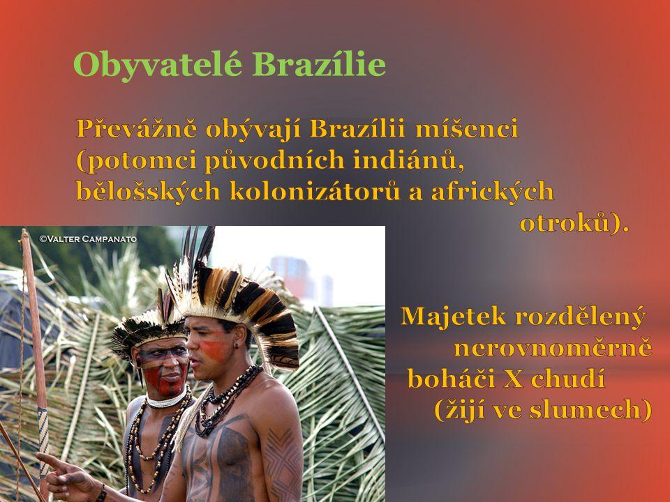 Obyvatelé Brazílie Převážně obývají Brazílii míšenci