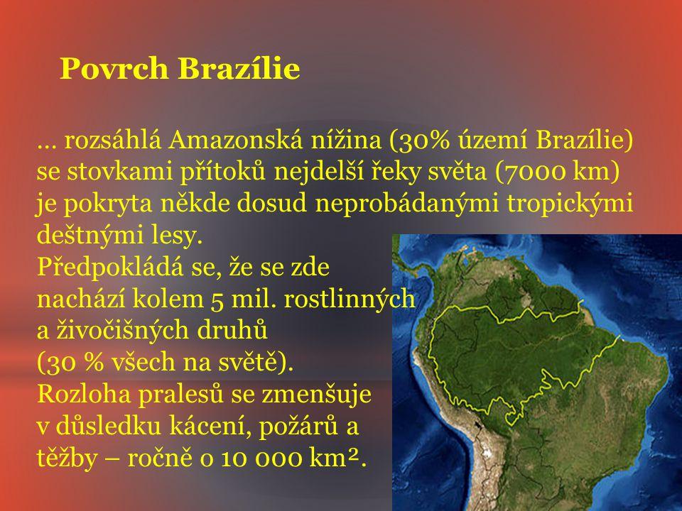 Povrch Brazílie … rozsáhlá Amazonská nížina (30% území Brazílie)