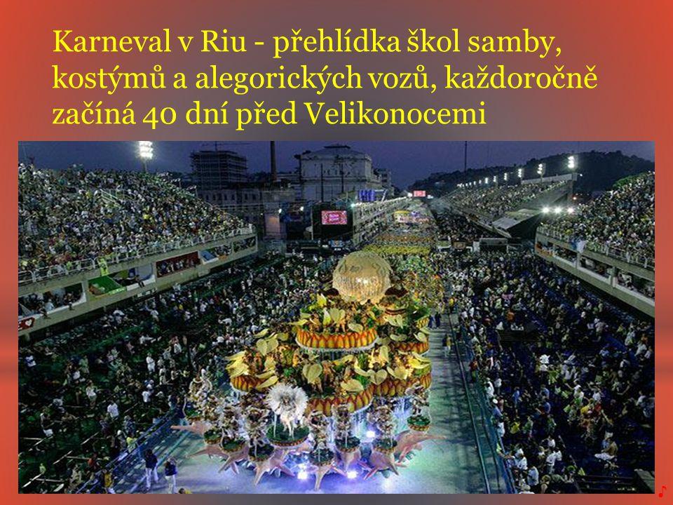 Karneval v Riu - přehlídka škol samby,