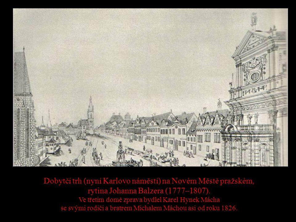 Dobytčí trh (nyní Karlovo náměstí) na Novém Městě pražském, rytina Johanna Balzera (1777–1807).