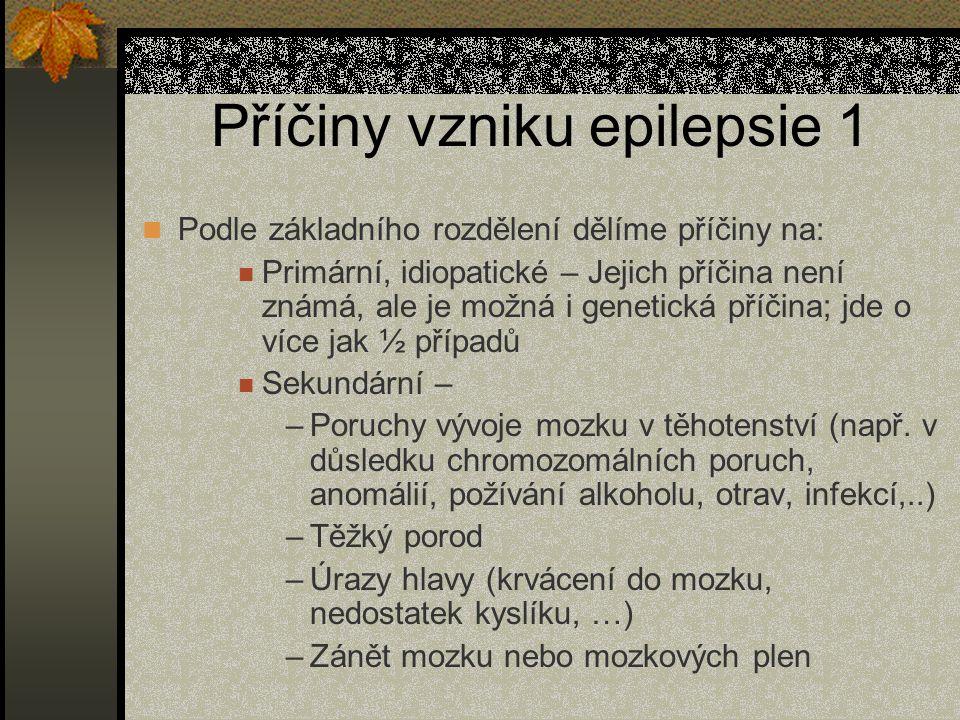 Příčiny vzniku epilepsie 1