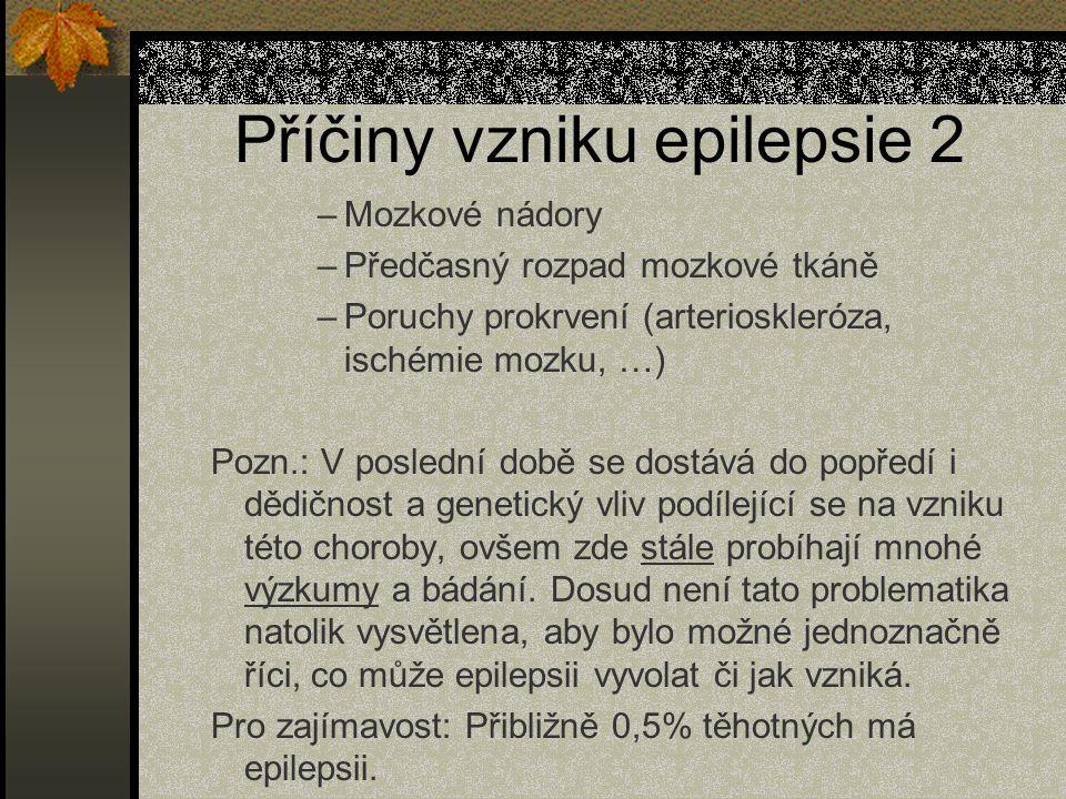 Příčiny vzniku epilepsie 2