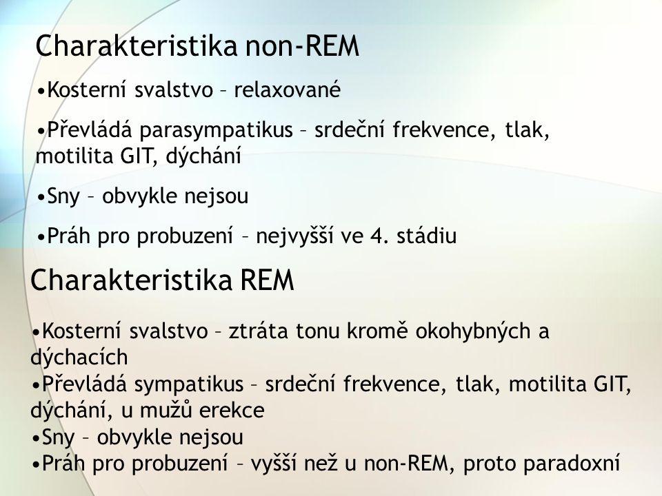 Charakteristika non-REM