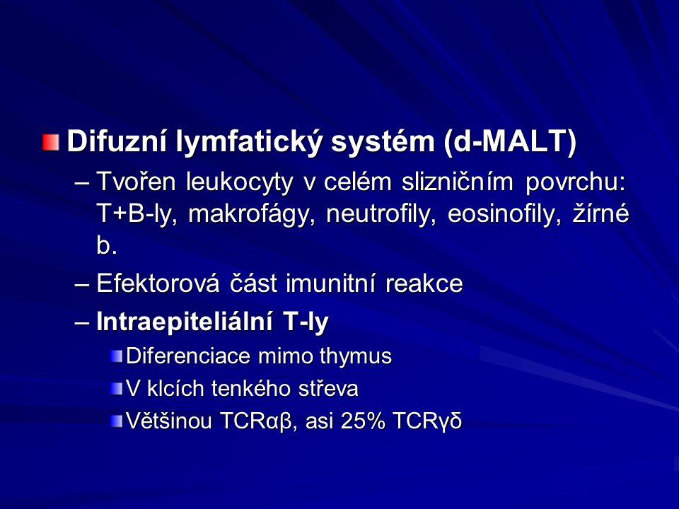 Difuzní lymfatický systém (d-MALT)