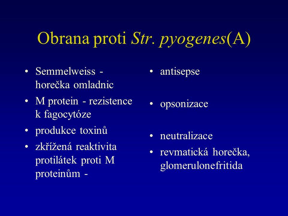 Obrana proti Str. pyogenes(A)
