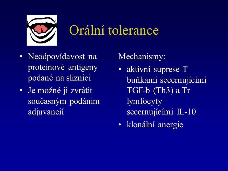 Orální tolerance Neodpovídavost na proteinové antigeny podané na sliznici. Je možné ji zvrátit současným podáním adjuvancií.