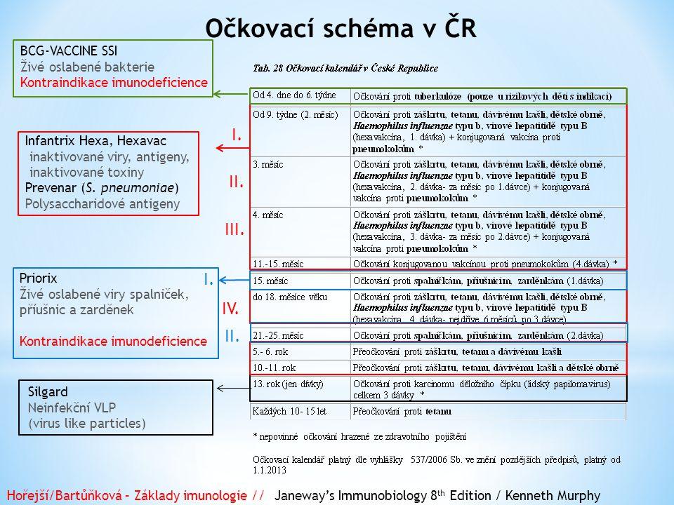 Očkovací schéma v ČR I. II. III. I. IV. II. BCG-VACCINE SSI