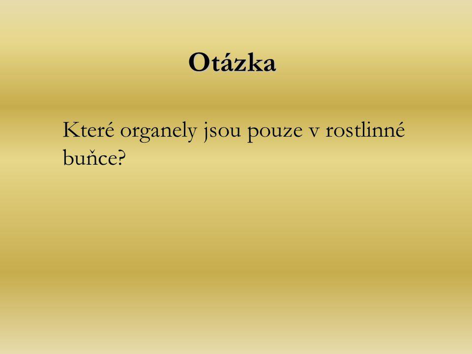 Otázka Které organely jsou pouze v rostlinné buňce