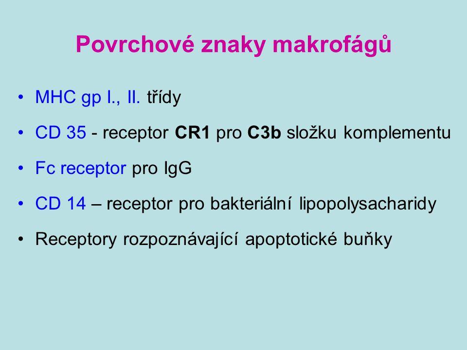 Povrchové znaky makrofágů