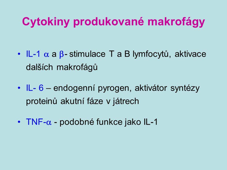 Cytokiny produkované makrofágy