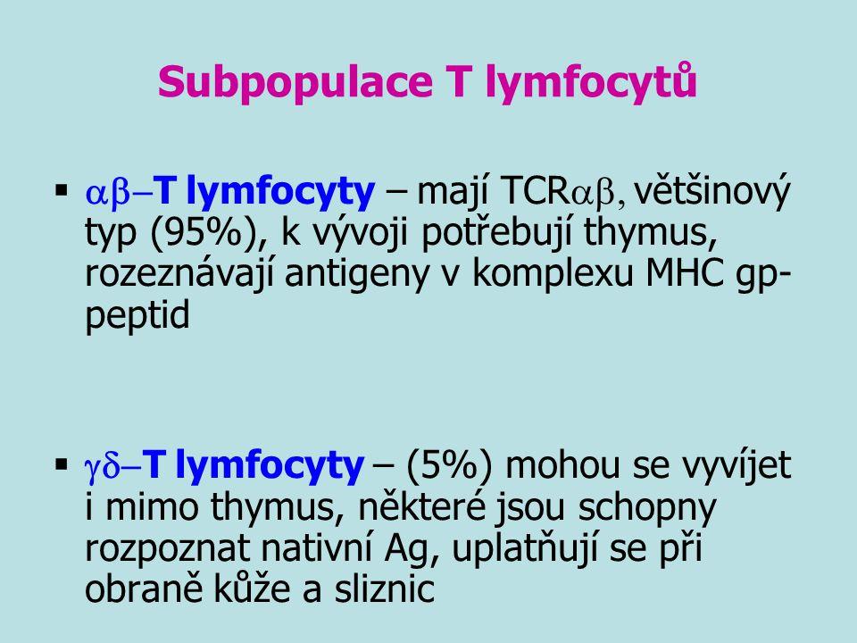 Subpopulace T lymfocytů