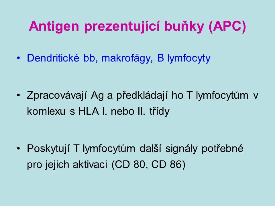 Antigen prezentující buňky (APC)