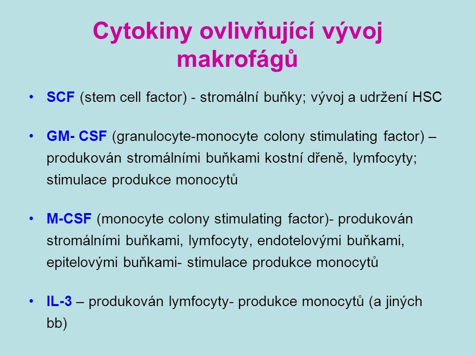 Cytokiny ovlivňující vývoj makrofágů