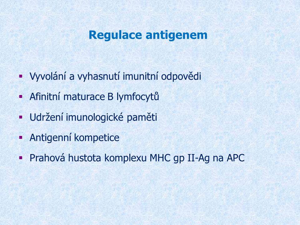 Regulace antigenem Vyvolání a vyhasnutí imunitní odpovědi