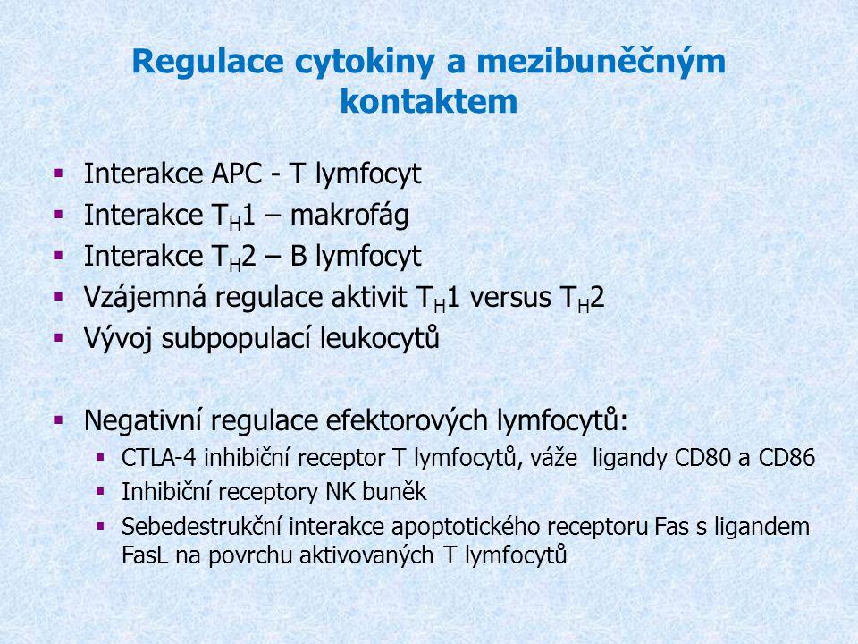 Regulace cytokiny a mezibuněčným kontaktem