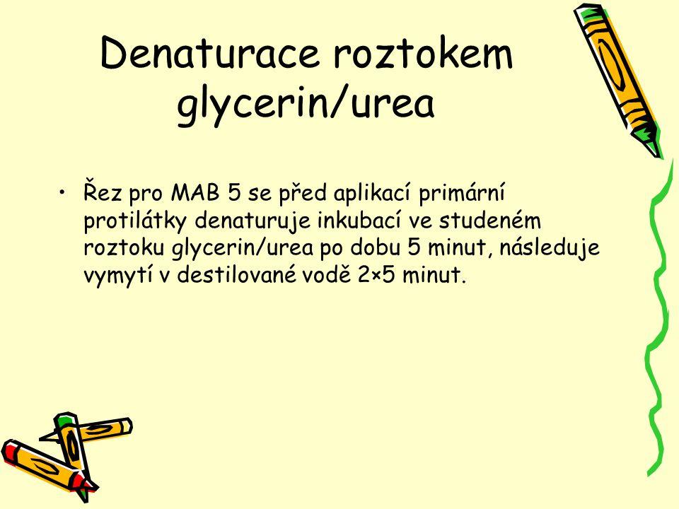 Denaturace roztokem glycerin/urea