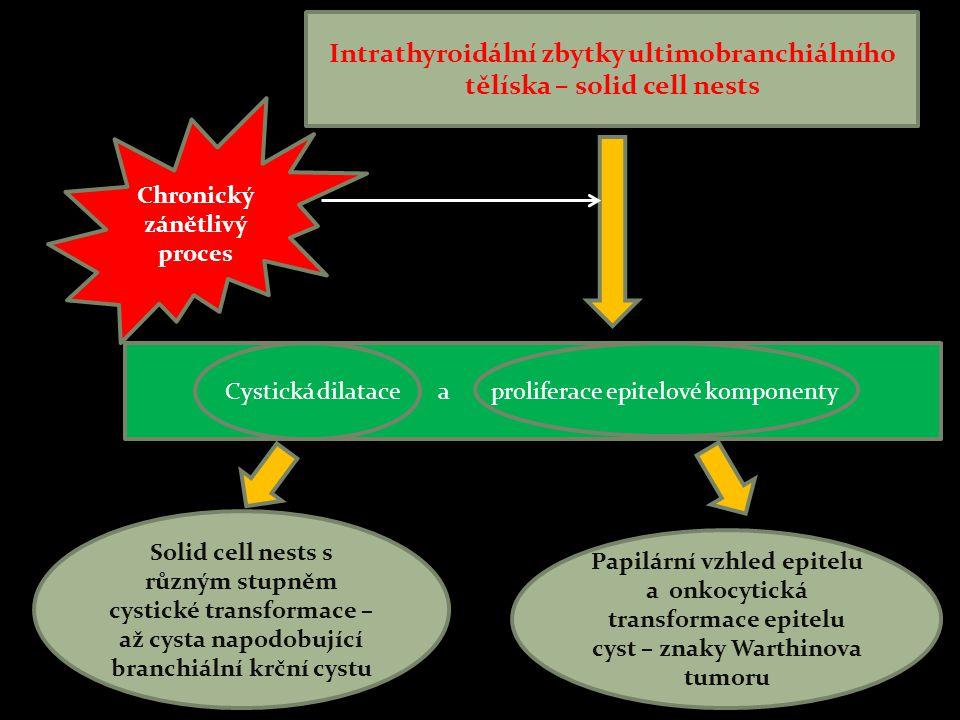 Intrathyroidální zbytky ultimobranchiálního tělíska – solid cell nests