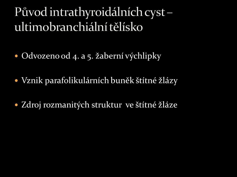 Původ intrathyroidálních cyst – ultimobranchiální tělísko