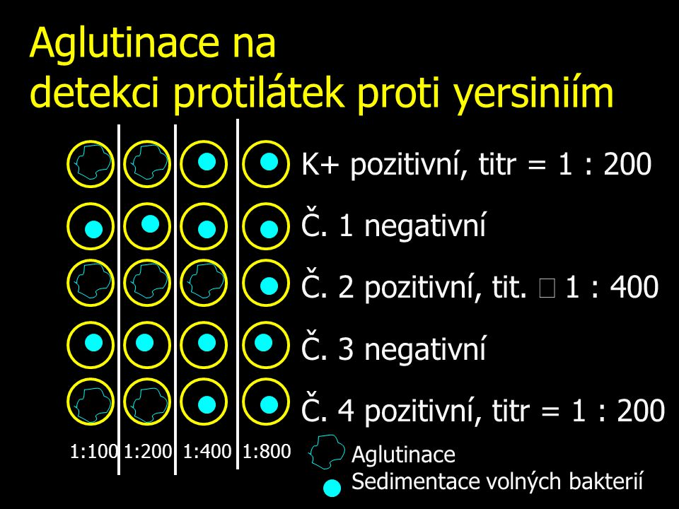 Aglutinace na detekci protilátek proti yersiniím