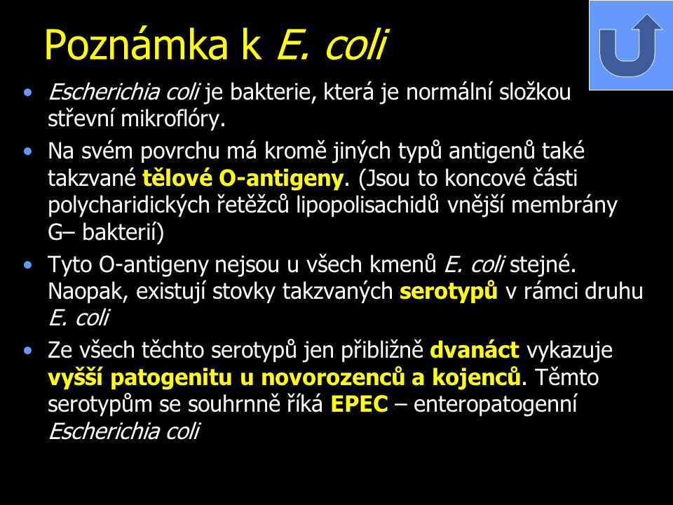 Poznámka k E. coli Escherichia coli je bakterie, která je normální složkou střevní mikroflóry.