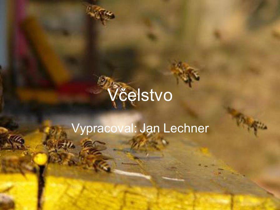 Vypracoval: Jan Lechner