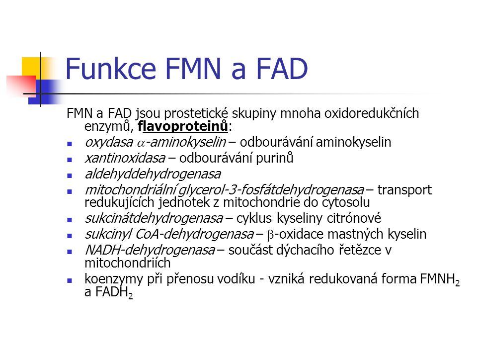 Funkce FMN a FAD FMN a FAD jsou prostetické skupiny mnoha oxidoredukčních enzymů, flavoproteinů: oxydasa a-aminokyselin – odbourávání aminokyselin.