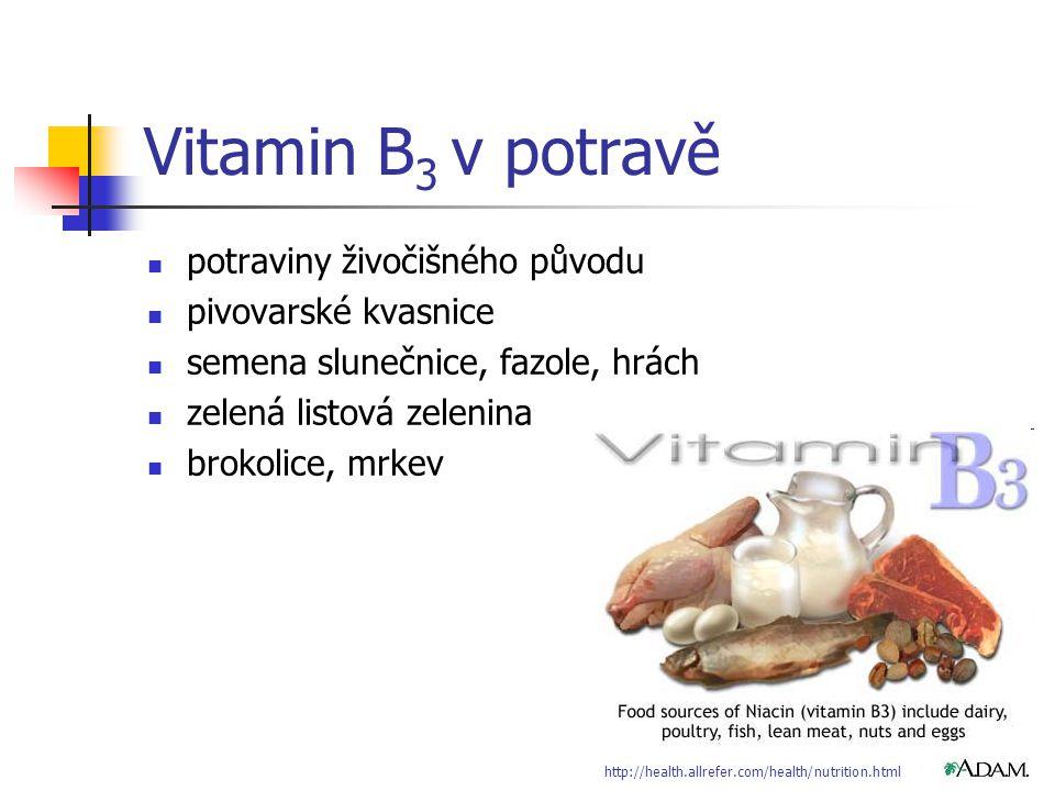 Vitamin B3 v potravě potraviny živočišného původu pivovarské kvasnice