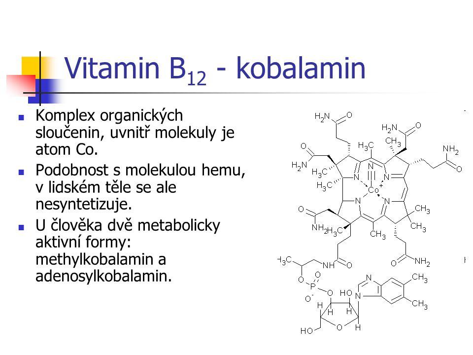 Vitamin B12 - kobalamin Komplex organických sloučenin, uvnitř molekuly je atom Co. Podobnost s molekulou hemu, v lidském těle se ale nesyntetizuje.