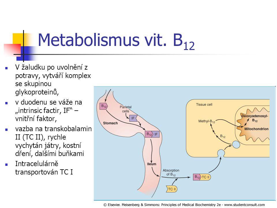 Metabolismus vit. B12 V žaludku po uvolnění z potravy, vytváří komplex se skupinou glykoproteinů,