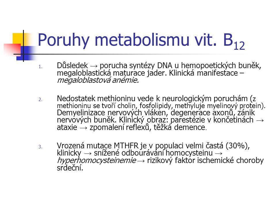 Poruhy metabolismu vit. B12